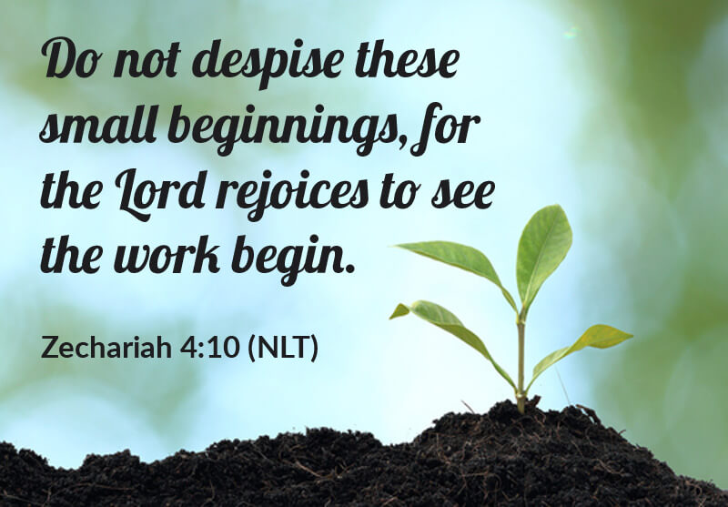 Zechariah 4:10 - Do Not Despise These Small Beginnings, for the Lord Rejoices to See the Work Begin