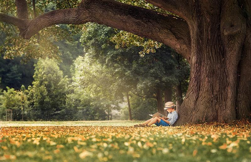 boy.under.tree
